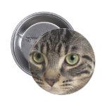 Gato de ojos verdes pin