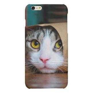 Gato de papel - gatos divertidos - meme del gato -