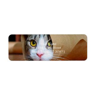 Gato de papel - gatos divertidos - meme del gato - etiqueta de remite