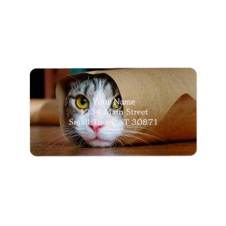 Gato de papel - gatos divertidos - meme del gato - etiquetas de dirección