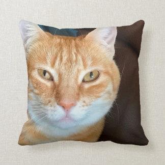 Gato de tabby anaranjado cojín decorativo