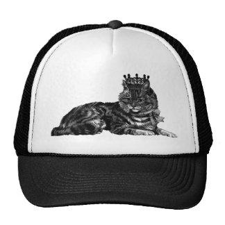 Gato de Tabby con la corona Gorra