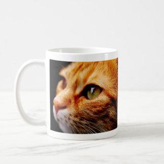 Gato de tigre anaranjado bonito taza de café