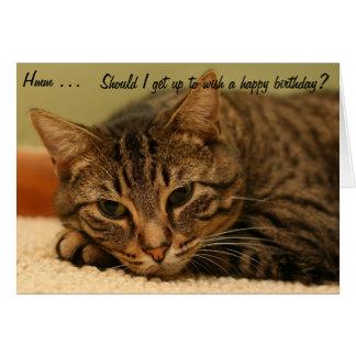 Gato: ¿Debo levantarme para desear un feliz Tarjeta De Felicitación