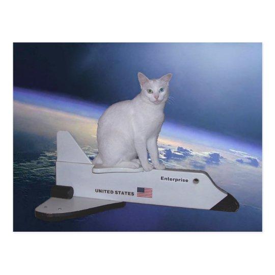 Gato del astronauta (alcohol) en transbordador postal