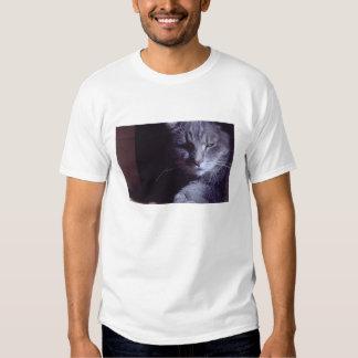 gato del dixie camisas