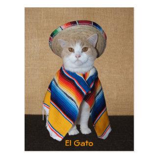 Gato del EL Gato en sombrero y Serape Postal