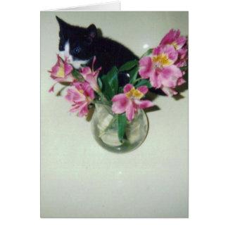 Gato del feliz cumpleaños con las flores en tarjeta de felicitación