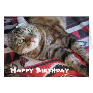 Gato del feliz cumpleaños tarjeta
