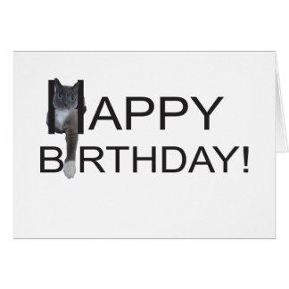 Gato del feliz cumpleaños tarjeta de felicitación
