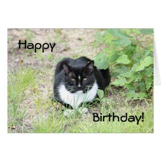 Gato del feliz cumpleaños tarjeta pequeña