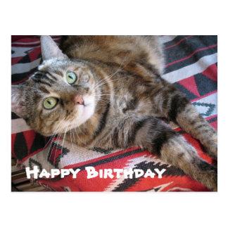 Gato del feliz cumpleaños postal