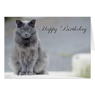 Gato del gris del feliz cumpleaños tarjetón