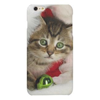 Gato del navidad - gato del gatito - gatos lindos