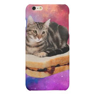 gato del pan - gato del espacio - gatos en espacio
