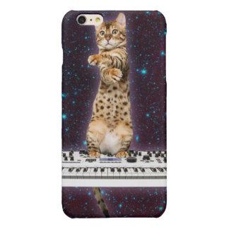 gato del teclado - gatos divertidos - amantes del