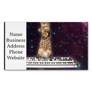 gato del teclado - gatos divertidos - amantes del tarjeta de visita magnética