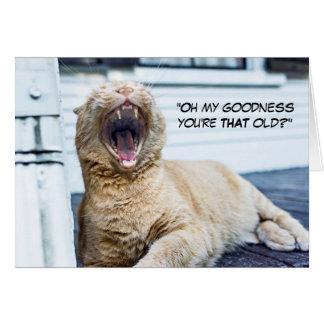 Gato divertido - sus opciones del texto tarjeta de felicitación