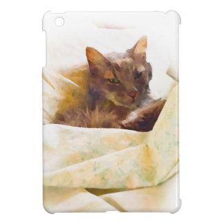 Gato dulce en hojas de cama