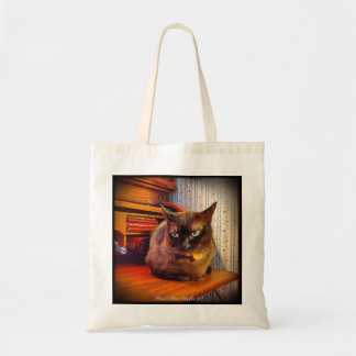 Gato en el escritorio del top de rollo, 2 bolsas de mano