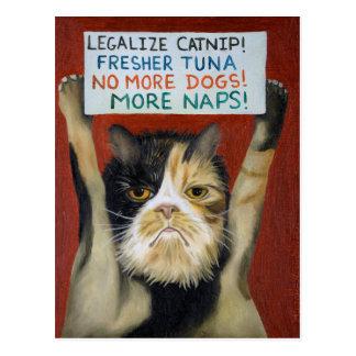 Gato en huelga postal
