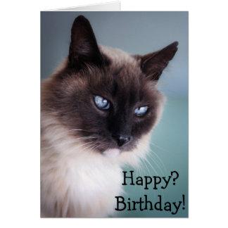 Gato escéptico o gruñón: ¿Feliz? ¡Cumpleaños! Tarjeta De Felicitación