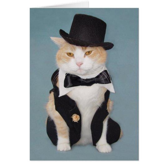 Gato/gatito formales divertidos adaptables tarjeta de felicitación