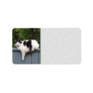 Gato gordo en la cerca etiquetas de dirección