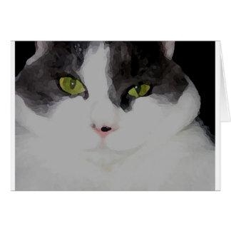 Gato gordo tarjetón