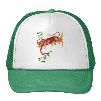 Gato hacia fuera en el gorra del miembro de A