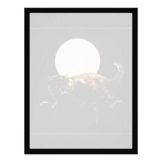 Gato iluminado por la luna