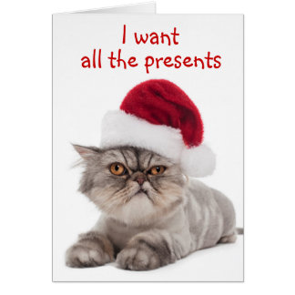 """Gato irritable divertido, """"quiero tarjeta DE TODOS"""