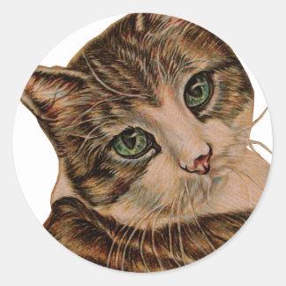 Gato lindo con los ojos verdes y la cabeza pegatina redonda