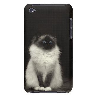 Gato lindo cubierta para iPod de barely there