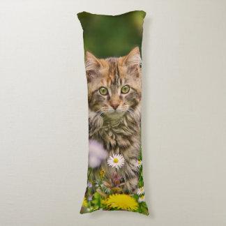 Gato lindo del gatito del Coon de Maine en el Almohada De Cuerpo Entero