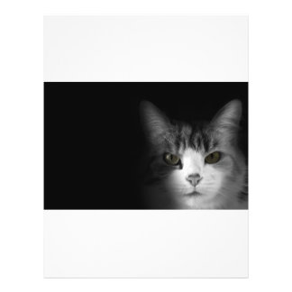 Gato lindo tarjeton