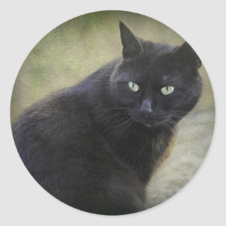 Gato masculino negro con los ojos verdes pegatinas redondas