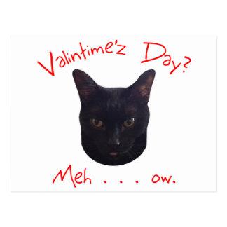 Gato Meh del el día de San Valentín Postal