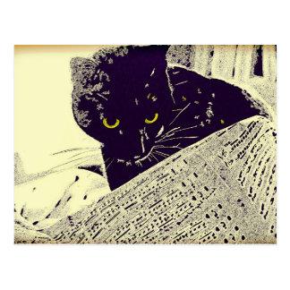 Gato musical - postal