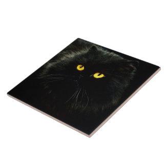 Gato negro azulejo cuadrado grande