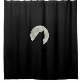 Gato negro en claro de luna