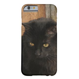 Gato negro, ojos del ámbar, tonos de la tierra funda para iPhone 6 barely there
