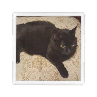 Gato negro Roxie Bandeja Acrílica