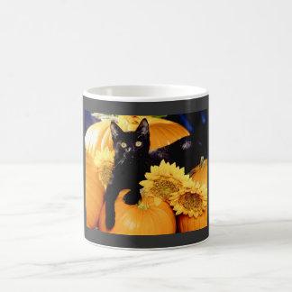 Gato negro taza de café