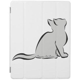 Gato negro, terraplén gris, texto interior cubierta de iPad