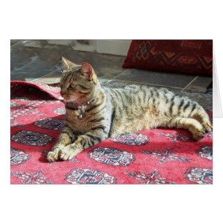 Gato Notecard: Minnie la moza descarada Tarjeta Pequeña