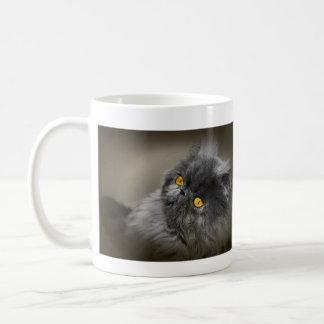 Gato oscuro mullido con los ojos anaranjados taza de café