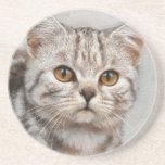 gato posavasos manualidades
