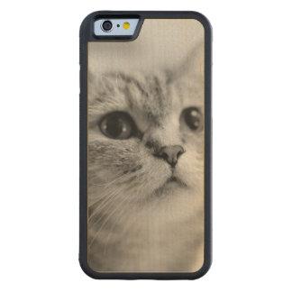 Gato precioso del mascota funda de iPhone 6 bumper arce