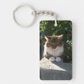 Gato que descansa sobre una pared llavero rectangular acrílico a doble cara